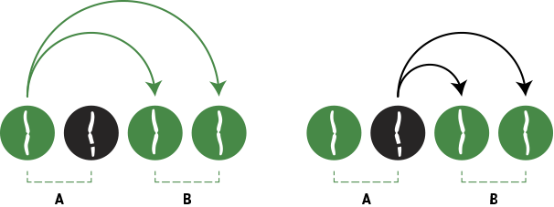 Illustration of a cell/chromosome splitting.